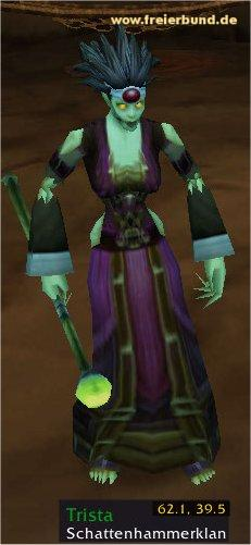 Trista (Willow) Quest NSC WoW World of Warcraft  1